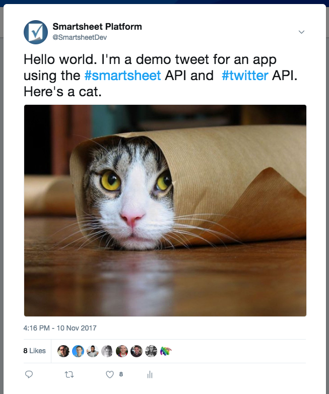 Sheet Tweetr posts Burrito Cat